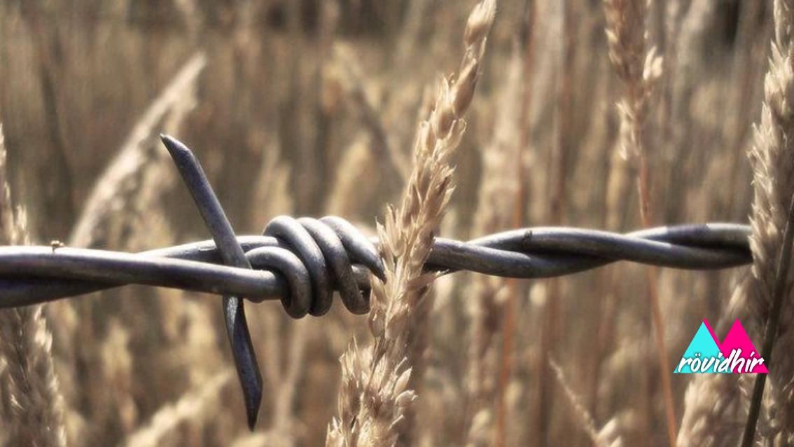 Február 25. – A kommunista diktatúrák áldozatainak emléknapja